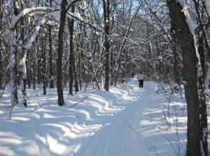 Skiing on the prairies