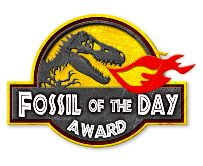 Fossil-of-the-Day-405x332