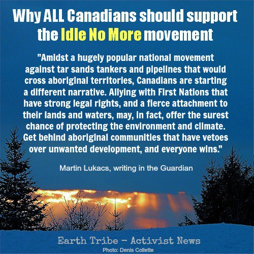 while all canadians should support Idle No More