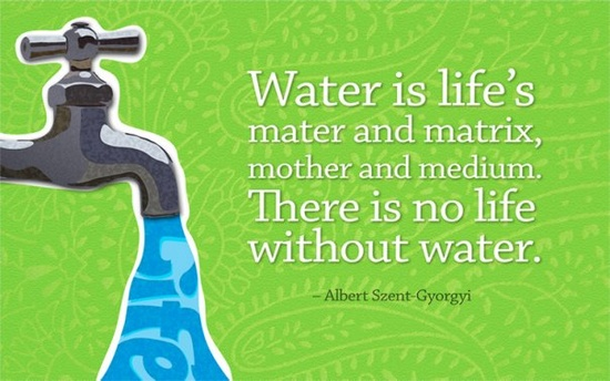 life without water Water is essential to life essayswater is the most important substance in our evolution and our daily lives without water, life as we know it would not have been.